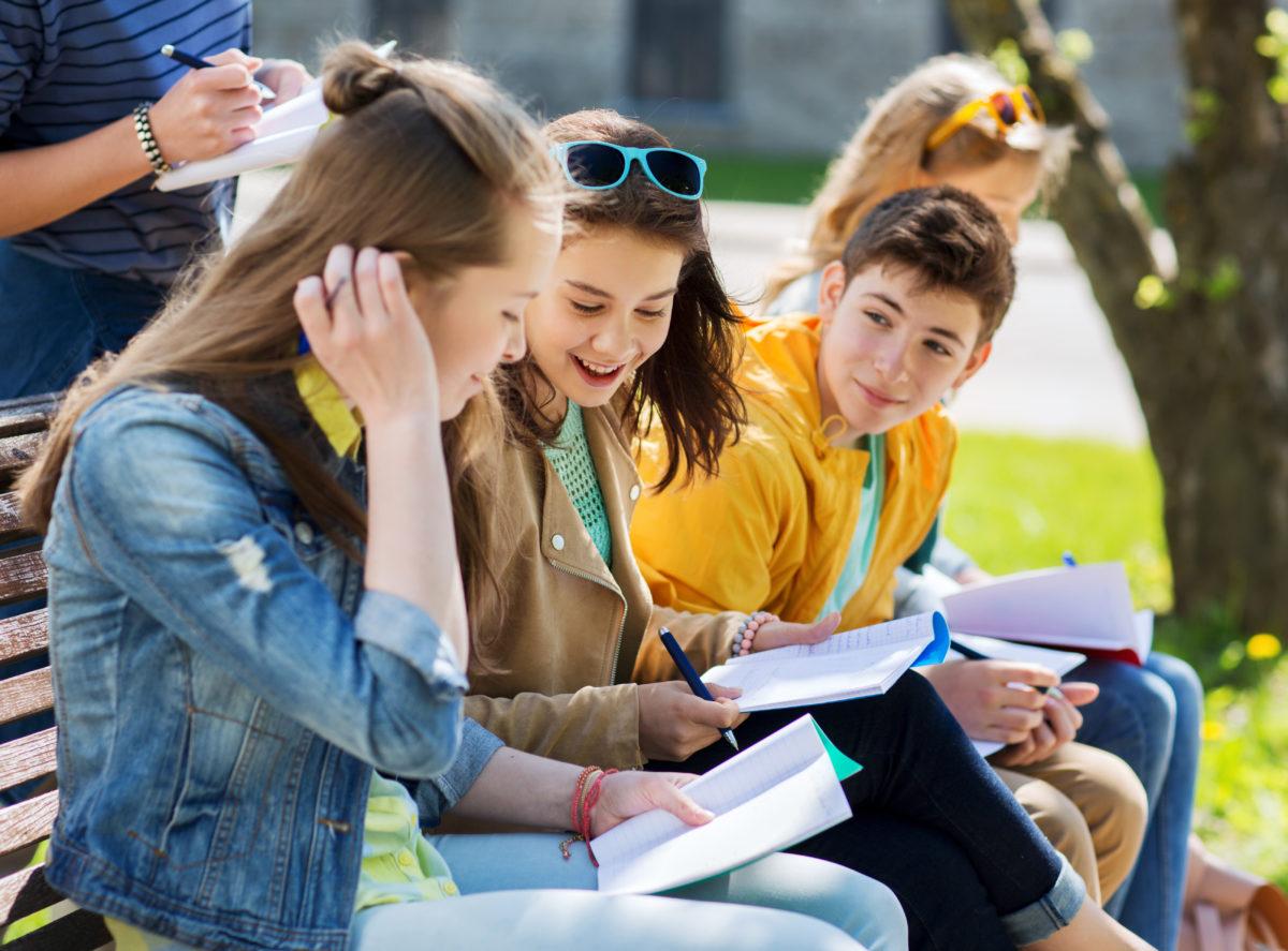 Project Education - Choix de la bonne ecole